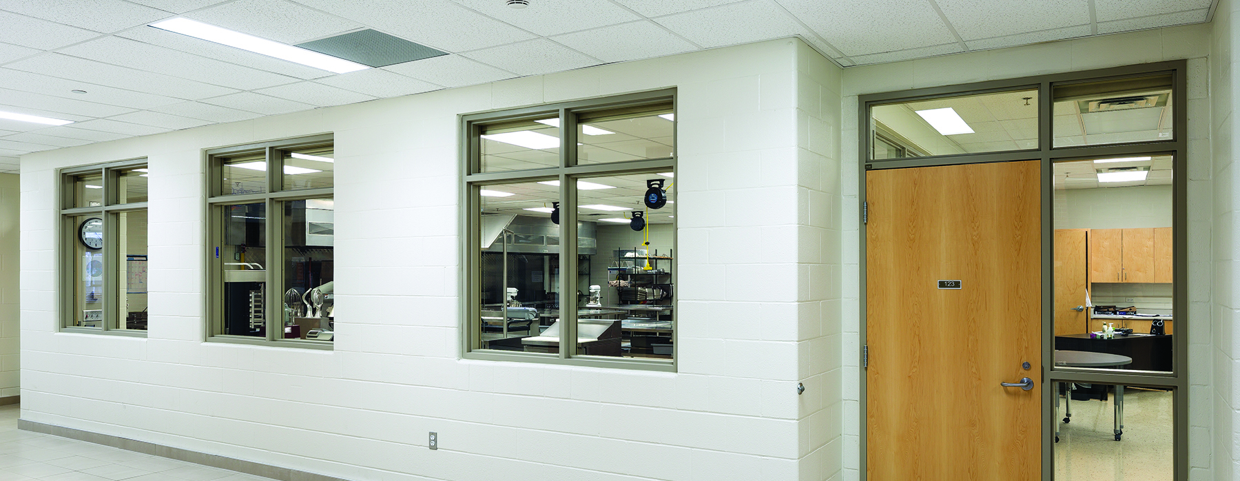 WireLite® NT - Fire-Rated, Safety-Rated Wired Glass, Surface-Applied ...